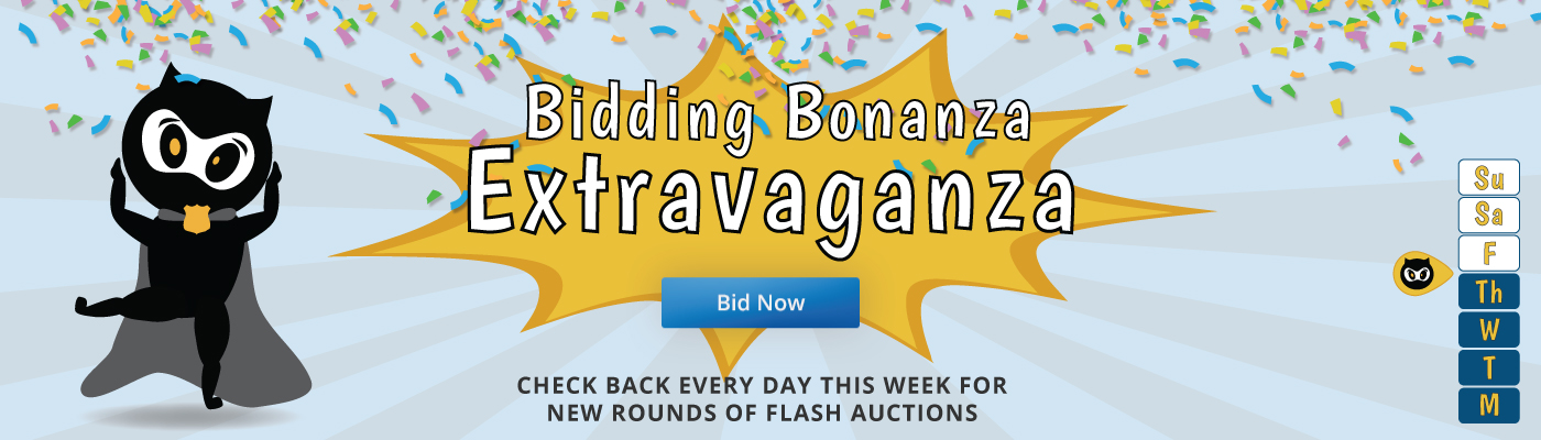 Bidding Bonanza Extravaganza - Flash Auctions - Police Auctions