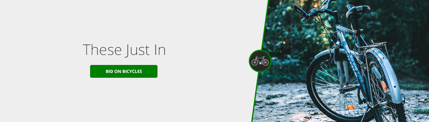 Bike Auctions