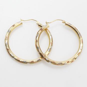 14kt Gold 2.7g Earrings
