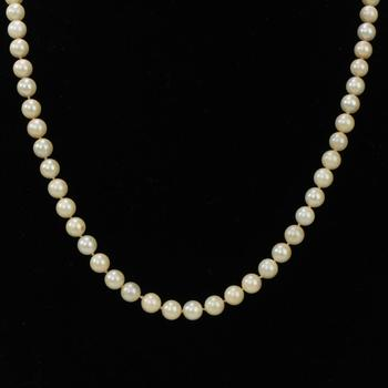 20.52g Pearl Necklace With 14kt Gold Clasp