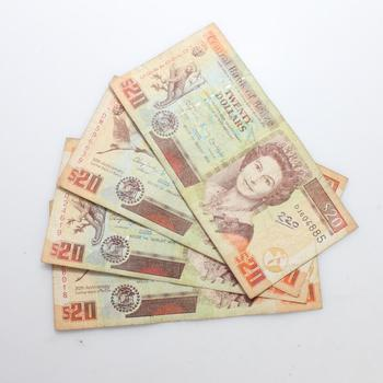 4 Foreign Currency