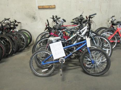 Group Of 11 Used Bikes