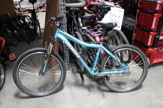 Metallic Blue Specialized Mountain Bike