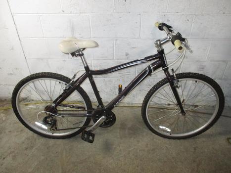 Raleigh 2.0 Mountain Bike