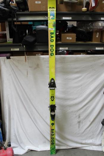 RD Bad Dog Skis With Bindings
