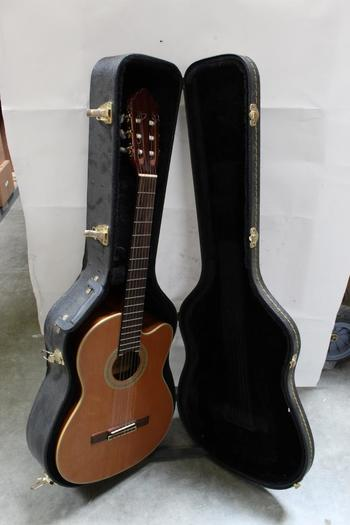 Samick Greg Bennett Acoustic-Electric Guitar