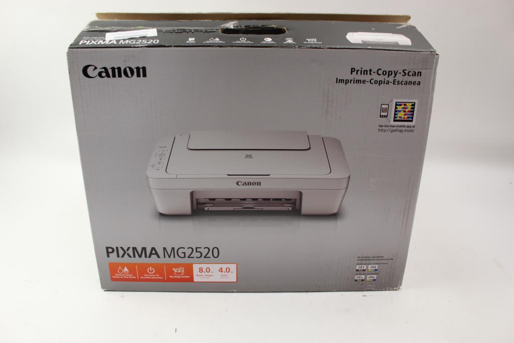 Canon PIXMA MG2520 Multifunction Printer