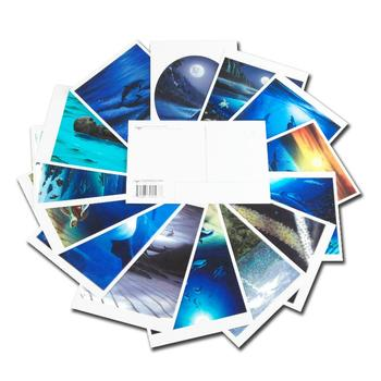 Wyland! Set of 15 Assorted Post Cards Depicting 15 of the Artist's Wonderful Works!