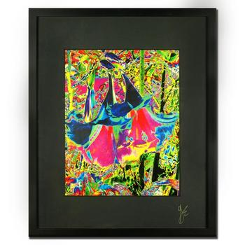 "George Marlowe, ""Floral Techno Abstraction #2"" Framed Hand Signed Fine Art Photography with COA"