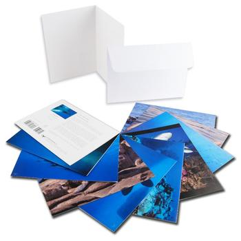 Wyland. Set of 10 Assorted Note Cards Featuring 10 of the Artist's Wonderful Marine Photographs.