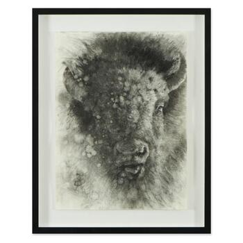 Vincent Cacciotti, Framed Original Charcoal Drawing, Hand Signed with Letter of Authenticity.