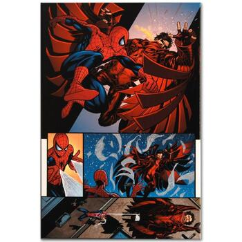 """Marvel Comics """"The Amazing Spider-Man #594"""" Numbered Limited Edition Canvas by Barry Kitson; Includes COA."""