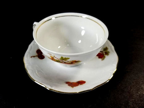 Vintage BAVARIA Winterling Fine Bone China Cup & Saucer