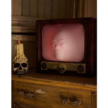 Spirit Terror TV Halloween Decoration