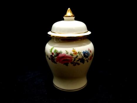 VTG Small Vintage Hand Painted Sadler England Porcelain Ginger Jar