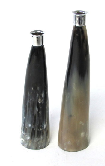 Pair of Horn Candle Stick Holders
