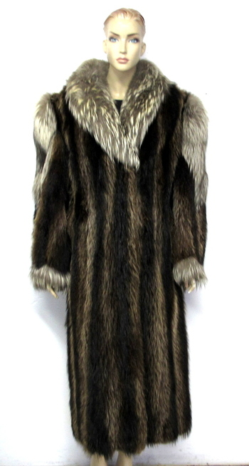 Full Length Raccoon Women's Coat with Coyote Collar and Trim- Size Large