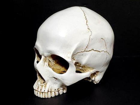 Resin Holoween Cracked Skull