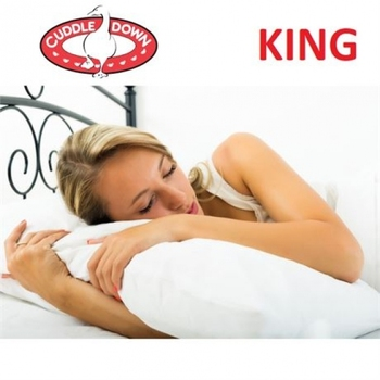 NEW CUDDLE DOWN BROME PILLOW, KING x 2