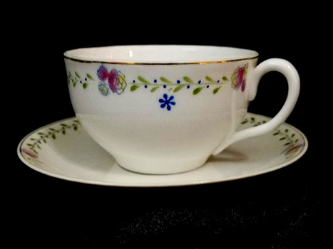 Antique Hand Painted Nippon Japan Cup & Saucer