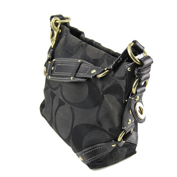 42e4118e5ea0 Coach 10619 Carly Signature Black Shoulder Bag