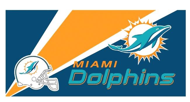 NFL Miami Dolphins Car Window Shade