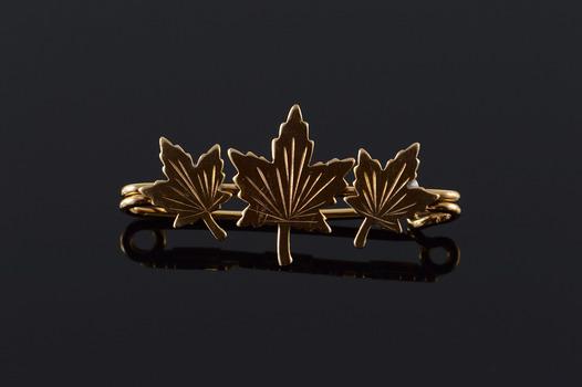 Starts @ Cost - 10K Retro Maple Leaf Tree 32mm Bar Yellow Gold Pin/Brooch