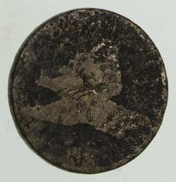 1857-58 Flying Eagle Cent - Very Tough - Issued for only 3 Years