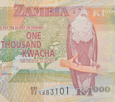 Limited Edition African BankOf ZambiaOne Thousand KwachaNote -Uncirculated Foreign CollectableNote
