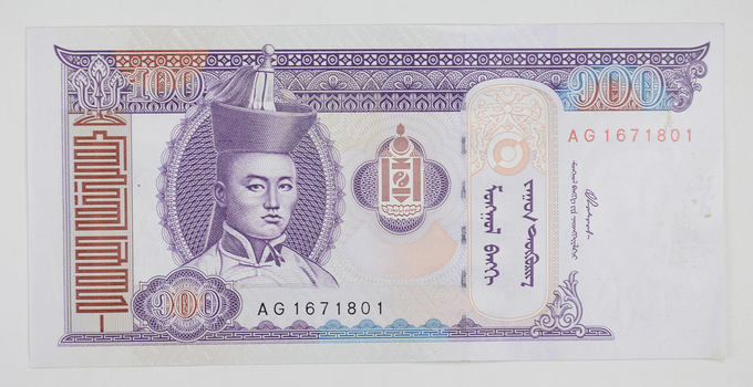 Mongolian Currency- 100 Tugrik - Rare Currency Note!