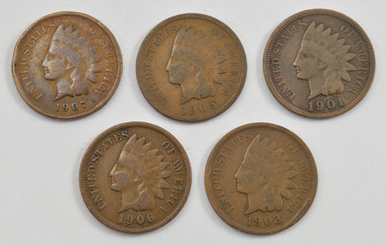 Mystery Lot: 5 Assorted 1900-1909 Indian Head Cents