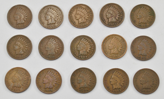 Mystery Lot:15 Assorted 1900-1909 Indian Head Cents