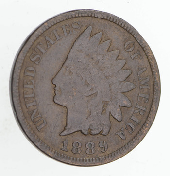 SHARP Coin - 1889 Indian Head Cent - Early Date - Look @ Liberty!