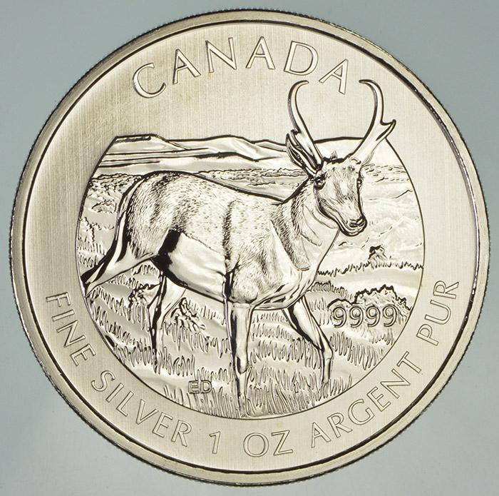 2013 Canada Wildlife Series Pronghorn Antelope 1 oz Silver BU $5 Coin in Capsule