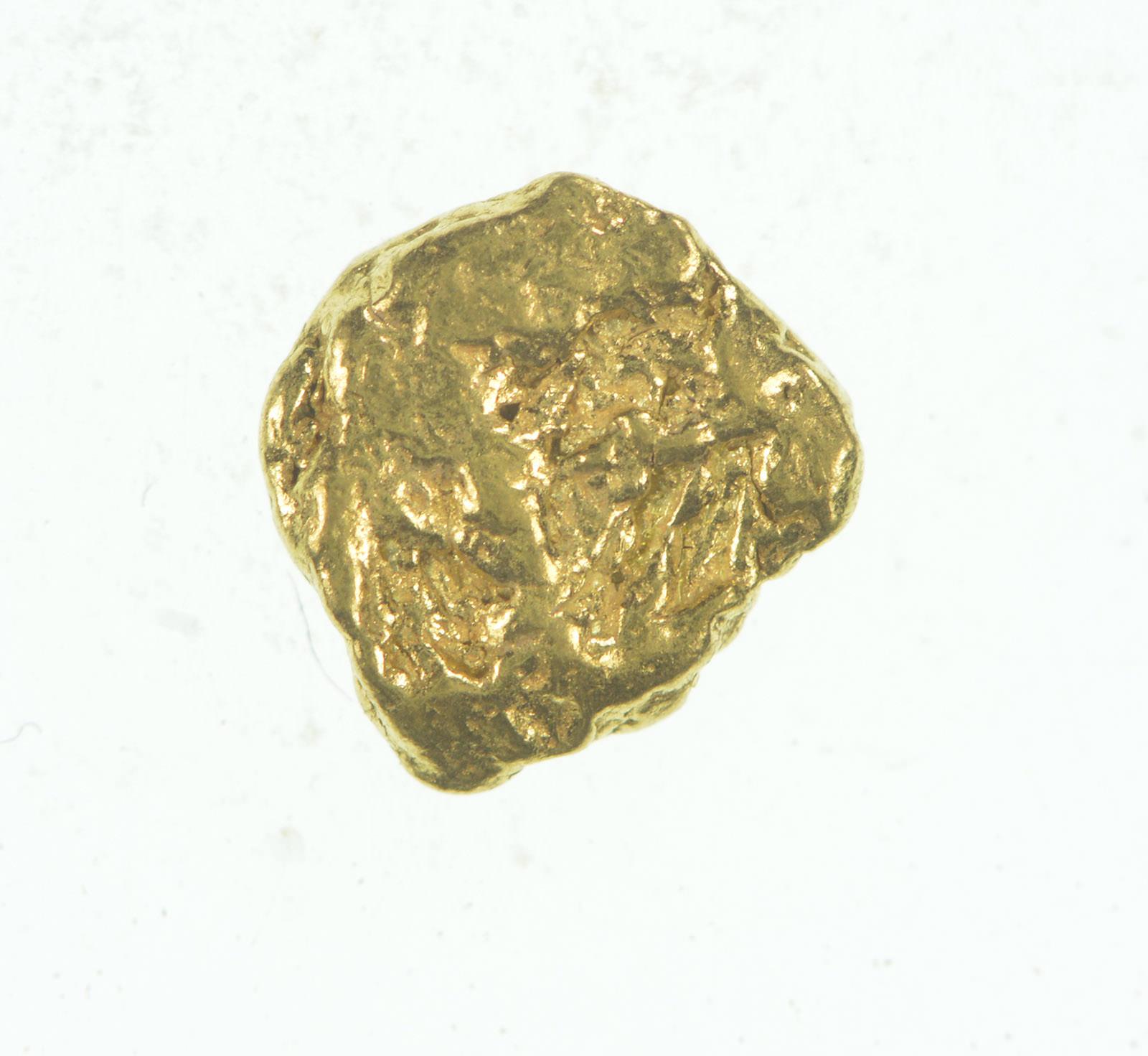 Gold Rush - Idaho Gold Nugget - Raw High Karat - 0 6g