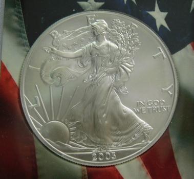 2003 American Silver Eagle in Custom Americana Holder
