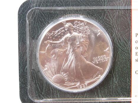 1987 Silver American Eagle Uncirculated (24)