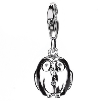 Hot Diamonds DT152 Wise Owl Silver Charm