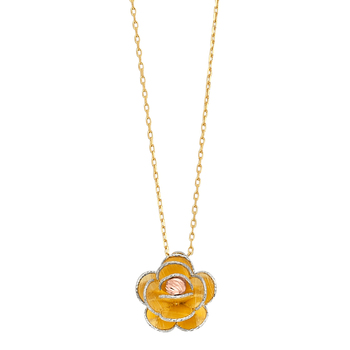 14K Yellow Gold Flower Light Chain Necklace –17+1